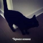 upqaQQsE_JM